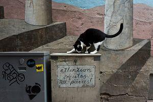 Kat bij muurschildering, Utrecht