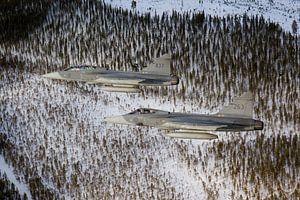 Zweedse Luchtmacht JAS-39 Gripen van