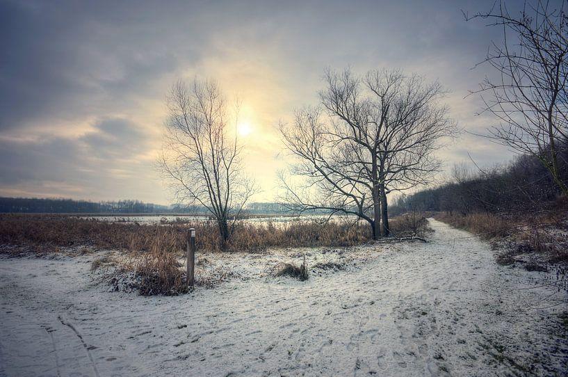 Lansschap - Winter van Angelique Brunas