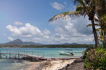 Tropisches Inselparadies von Joost Winkens