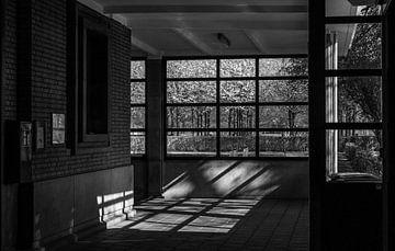 De vensters laten de lente binnen von Boudewijn Tempelmans