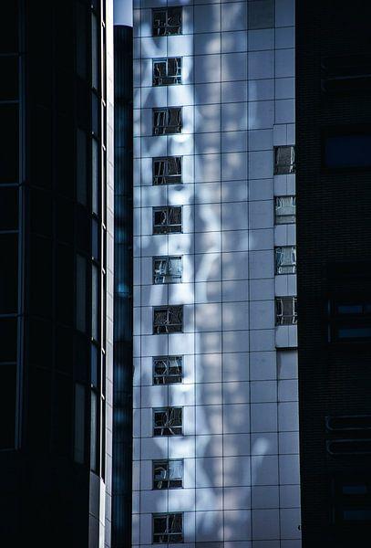 Shadow  sur Godelieve Luijk