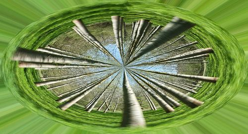 Bomencirkel