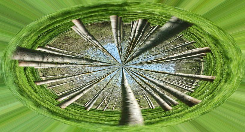 Bomencirkel van Artelier Gerdah