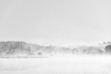 Misty lake van Max ter Burg Fotografie