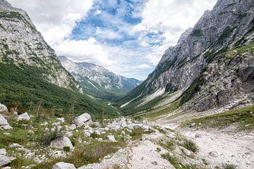 Vrata vallei Slovenie van Cynthia van Diggele