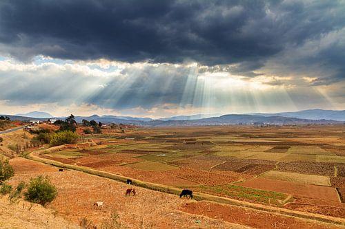 Zonnestralen in het landschap van Madagaskar van Dennis van de Water