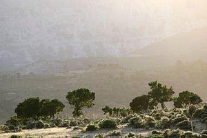 Sardinian Valley II