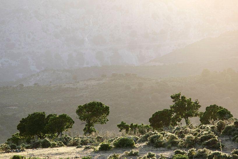 Sardinian Valley II van Mark Leeman
