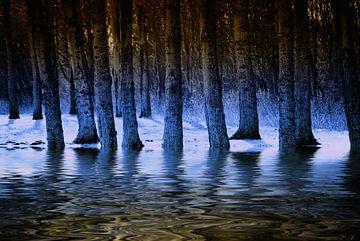 Blauwe waterbos von