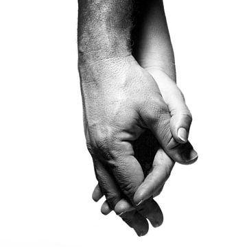 Handen 6 von Arnold van Leeuwen