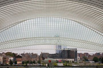 ode aan Santiago Calatrava van