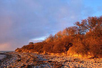 Winterabendsonne van Ostsee Bilder