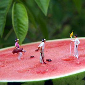 Melon Open von Ulrike Schopp
