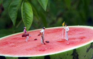 Melon Open van