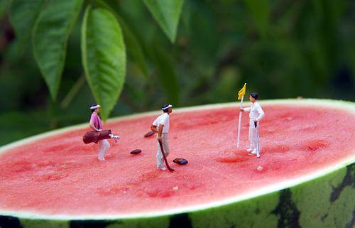 Melon Open von