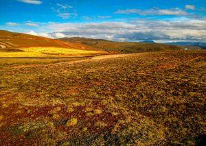 Mooie kleuren in het ongerepte landschap, IJsland