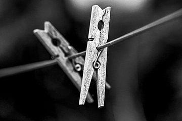 Knijpers van Scholtes Fotografie