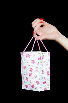 Shopping queen van Anita Hermans
