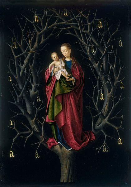 Die Jungfrau vom trockenen Baum, Petrus Christus von Meesterlijcke Meesters