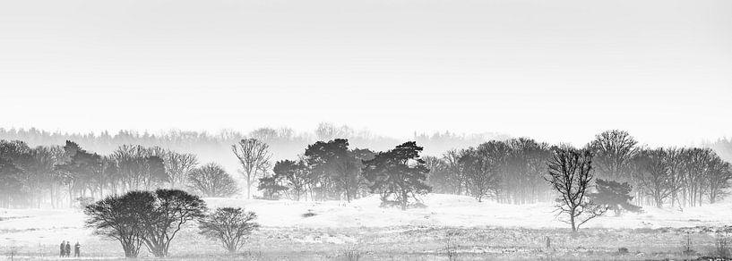 Misty Sunday van Nanouk el Gamal - Wijchers (Photonook)