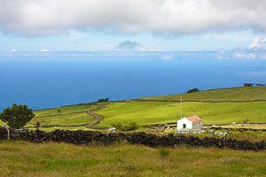 Azoren landbouwgrond van