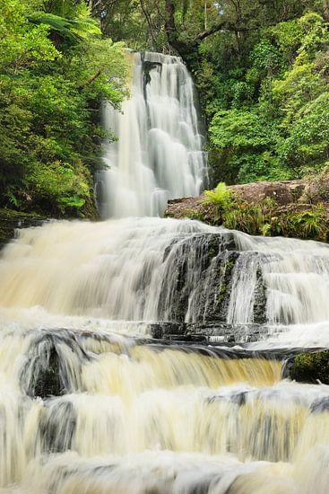 McLean Falls, The Catlins, Otago, Nieuw-Zeeland...