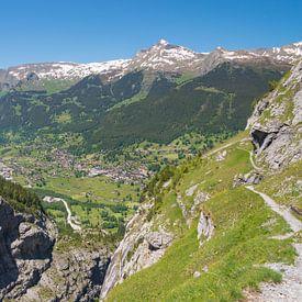 Grindelwald in de vallei, Zwitserland van Peter Apers