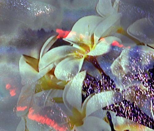 Abstrakte Blüte van