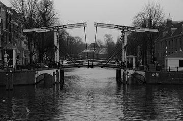 Amsterdam Brug van Human- pictures