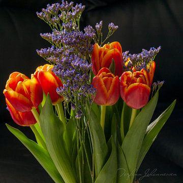 Tulpen von Torfinn Johannessen