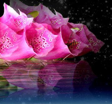 Ein Hauch von Floral van