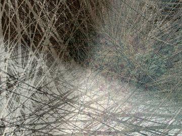Composition des branches de saule sur Anita Snik-Broeken