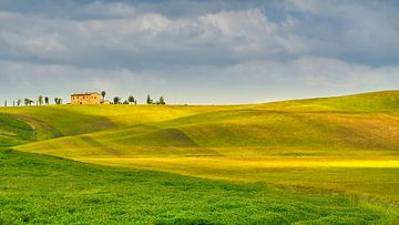 Hügellandschaft in der Toskana von eric van der eijk