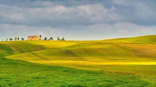 glooiend landschap in Toscane van