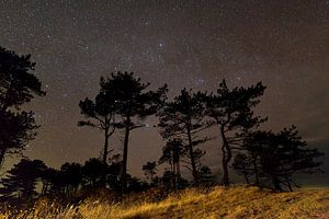 Ciel étoilé au-dessus des Pays-Bas