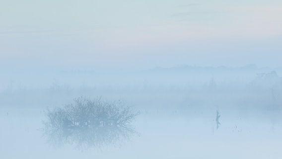 Mist in de vroege ochtend over het water van Art Wittingen