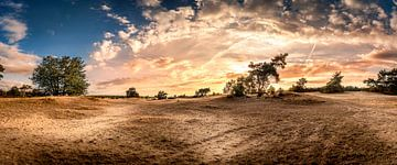 Panorama zandvlakte tijdens de zonsondergang. van Alexander Cox