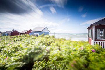 Wind über der dänischen Südsee von Matthias Nolde