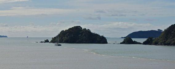 Uitzicht over de Bay of Islands van Inge Teunissen