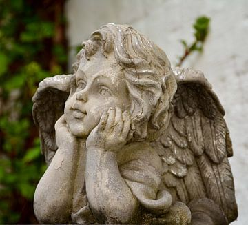 Engel van Martine Moens