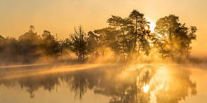 Sonnenaufgang über den Leersumse Plassen, Leersumse Veld, Utrechtse Heuvelrug, Niederlande