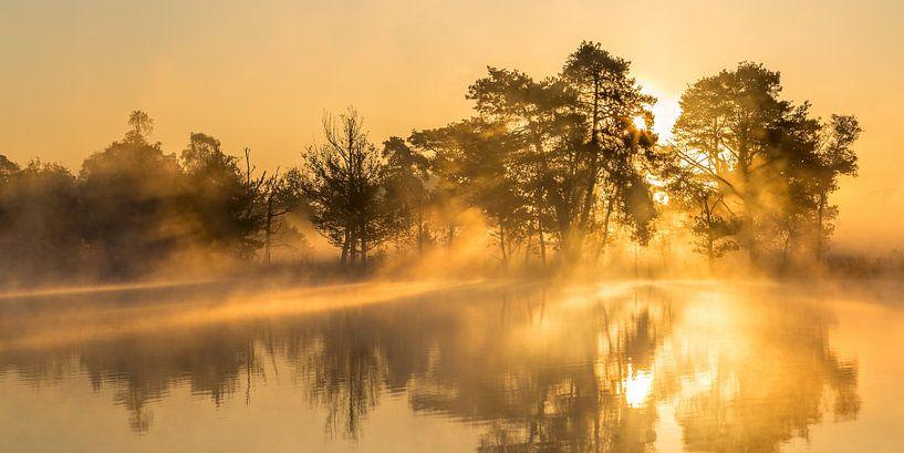 Sonnenaufgang über den Leersumse Plassen, Leersumse Veld, Utrechtse Heuvelrug, Niederlande von Sjaak den Breeje Landschapsfotografie