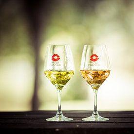 Franse wijnen van Wim Demortier