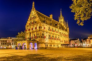 Stadhuis Gouda achteraanzicht van Michael van der Burg
