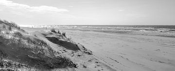 Coastal B&W van Alex Hiemstra