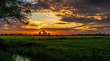 Avondje Leeuwarden van Sparkle King