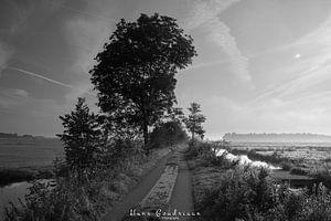 Mistig paadje van Hans Goudriaan