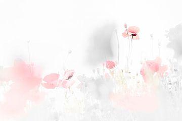 Daring poppies van Bob Daalder