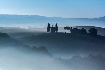 Blauwe ochtenduurtje van Filip Staes